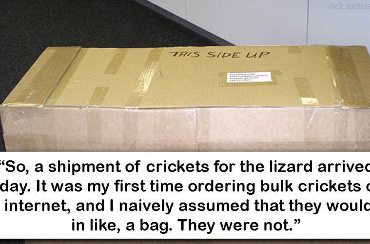 Releasing crickets