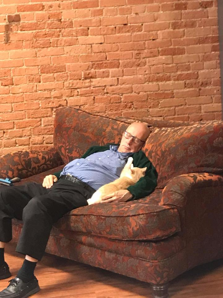 Terry naps together with a ginger shelter cat at Safe Haven Pet Sanctuary