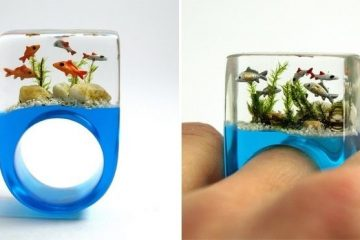 aquarium ring
