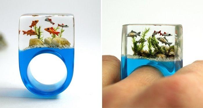aquarium ring