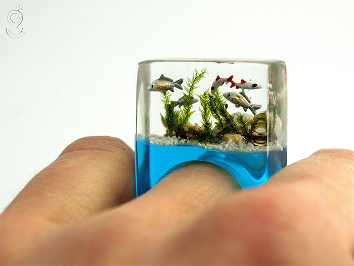 aquarium ring mini fishes