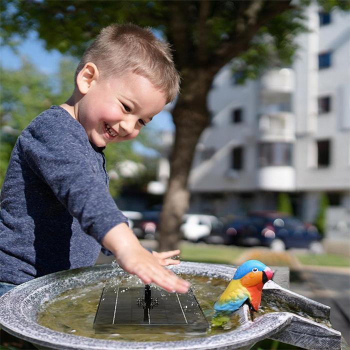 bird bath water spray