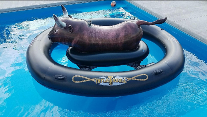 bull ride-on float pool toy