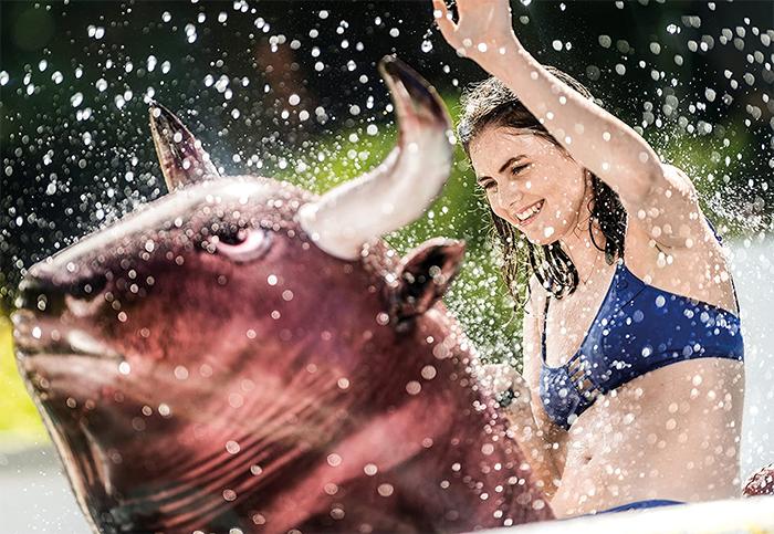 bull ride-on float pool