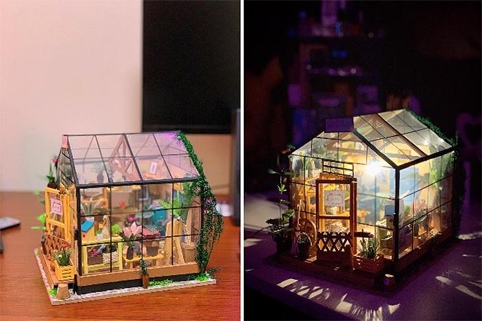 diy mini greenhouse kit light