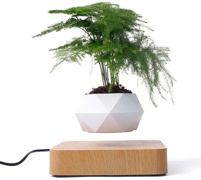 floating pot magnetic platform