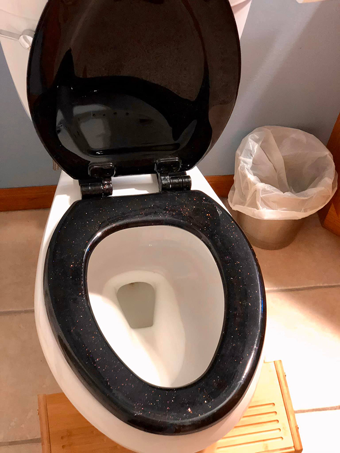 galactic mood ring toilet seat by the engineer artisans
