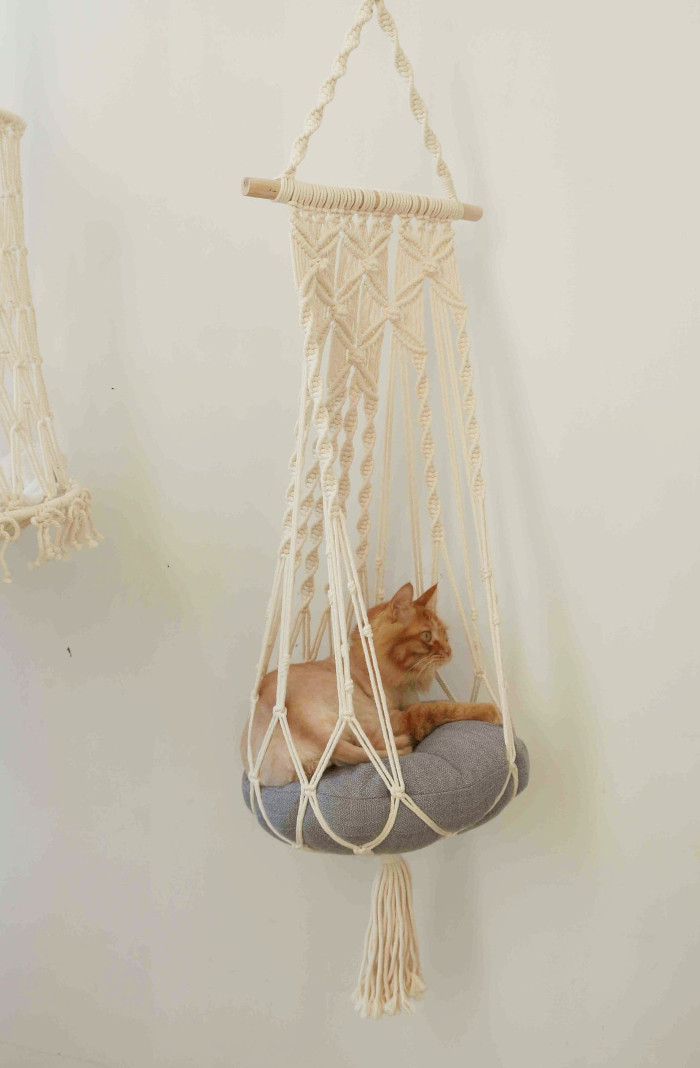 ginger cat relaxes inside one of the hanging cat hammocks