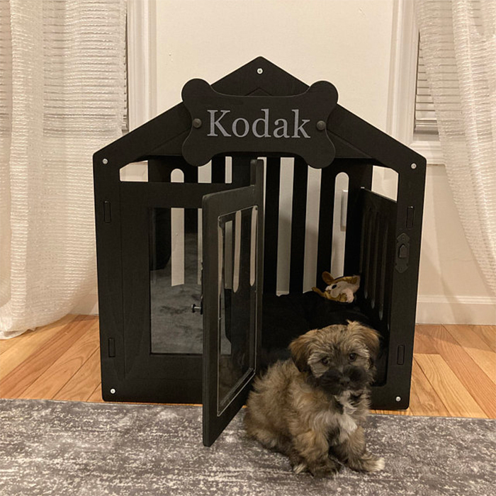 modern dog house black finish