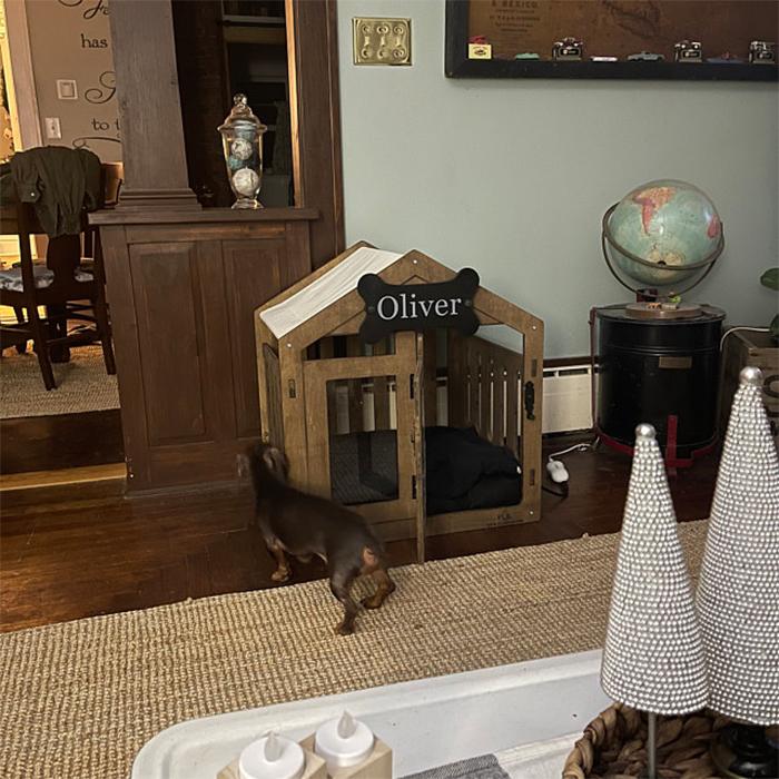 modern dog house walnut finish