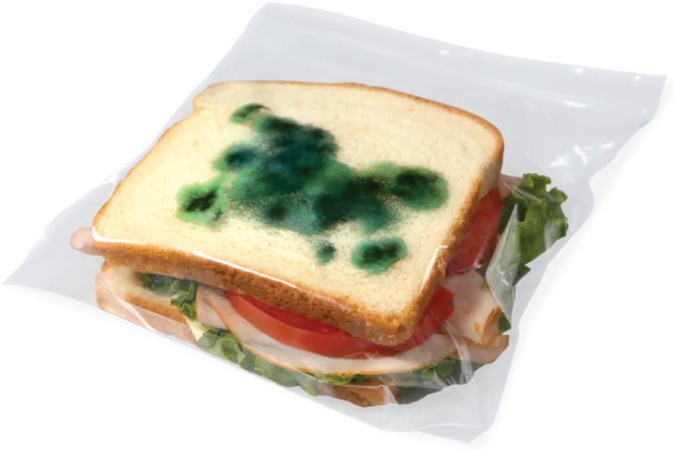 moldy lunch bags