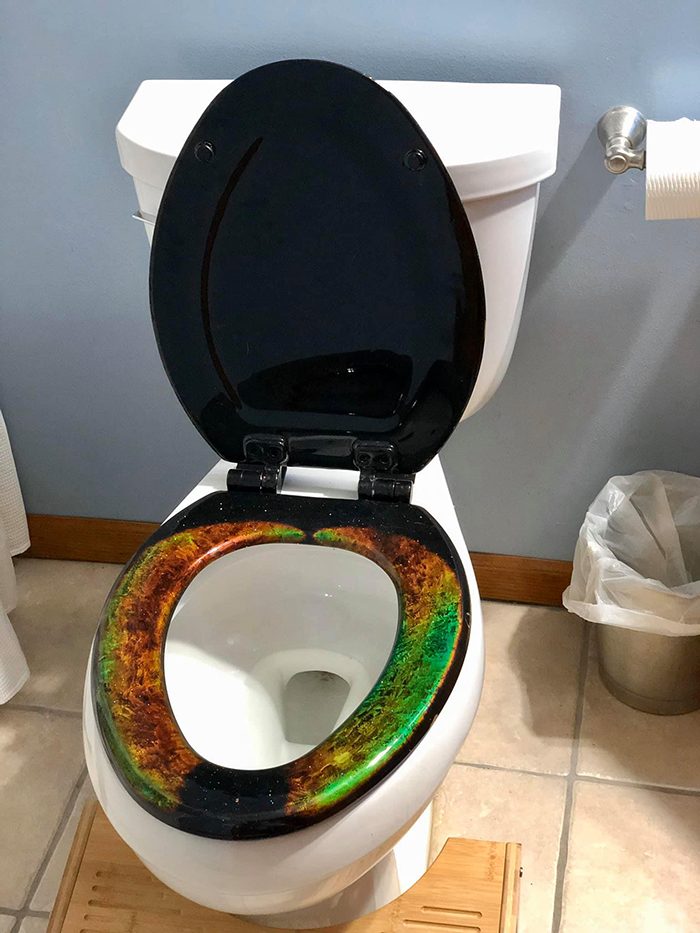 mood ring toilet seat by the engineer artisans