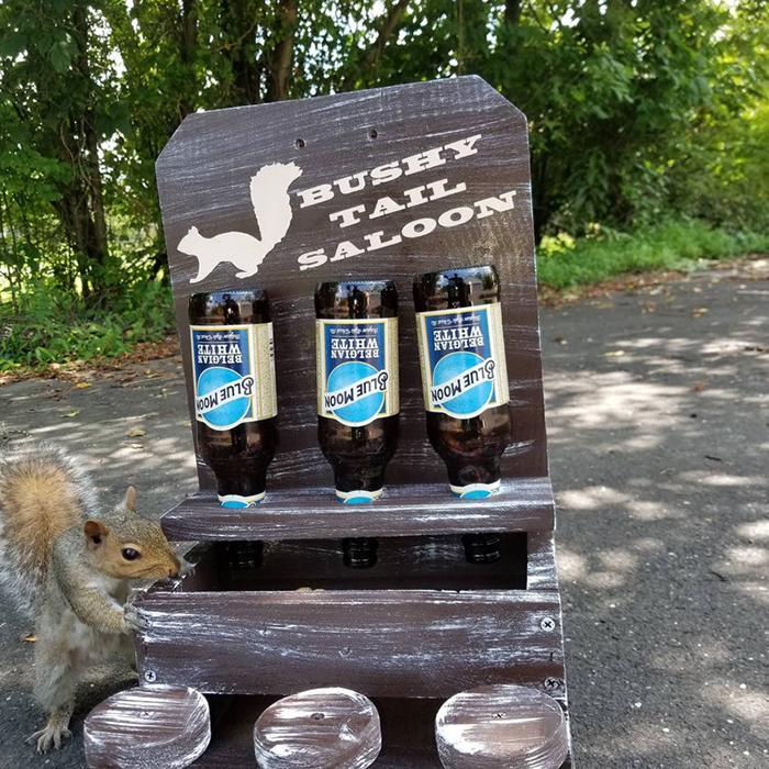 nutsaboutskwerls wooden squirrel saloon