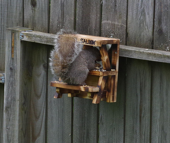 oldsaybrookwoodcraft wooden outdoor critter feeder