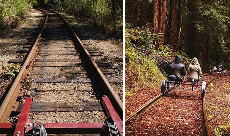 rail bike tour