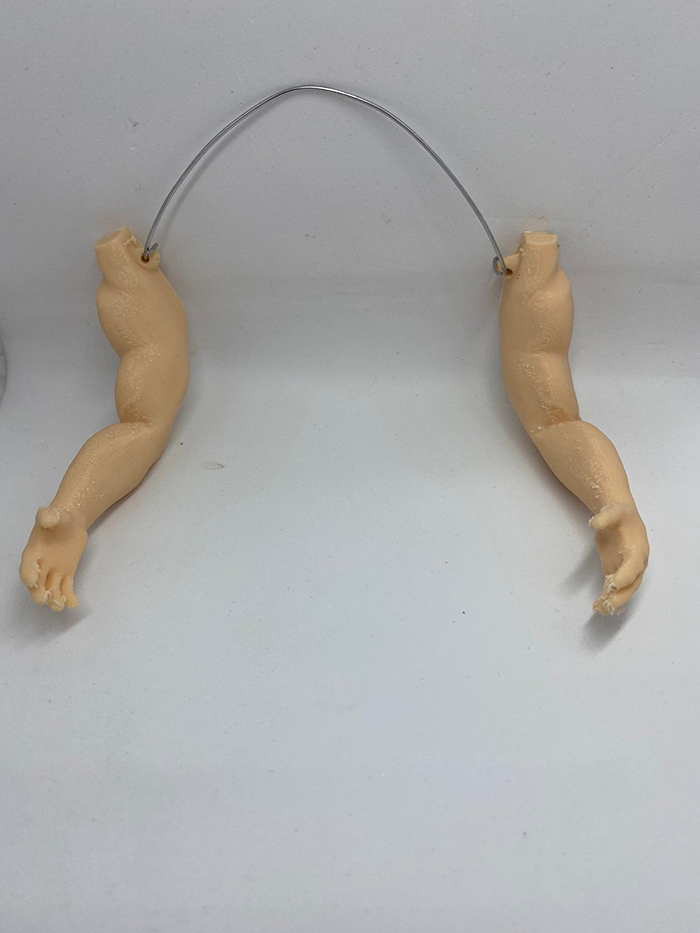 seeyousoonfr human upper limb accessories for farm fowl