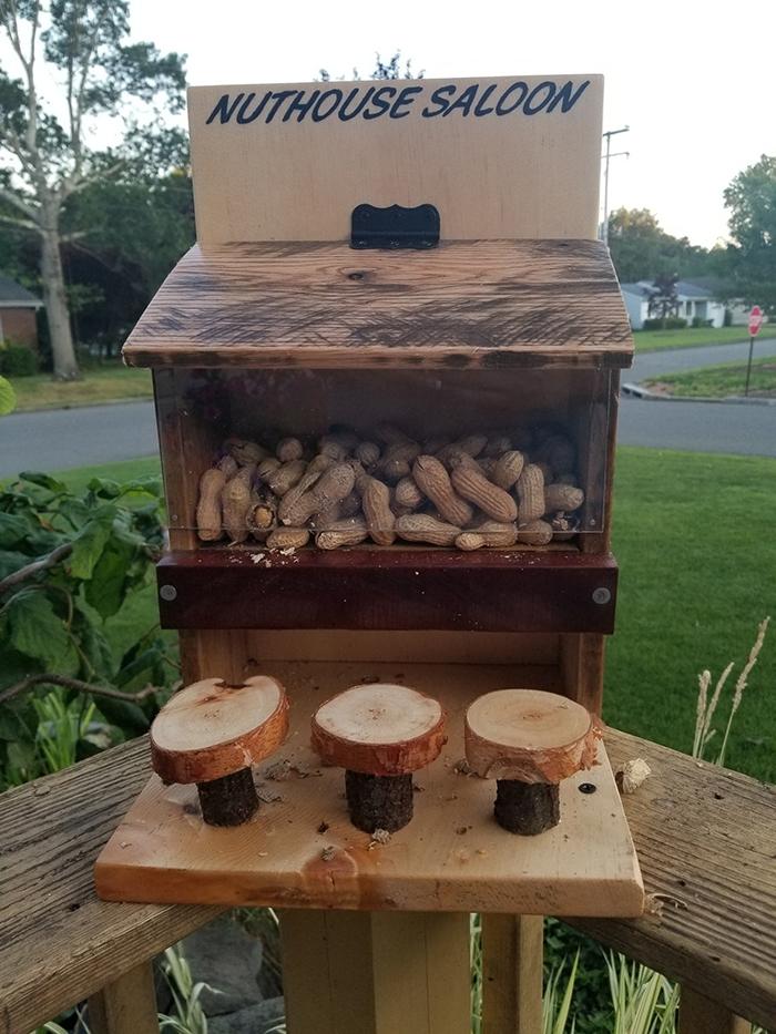 woodanthings wooden outdoor critter feeder