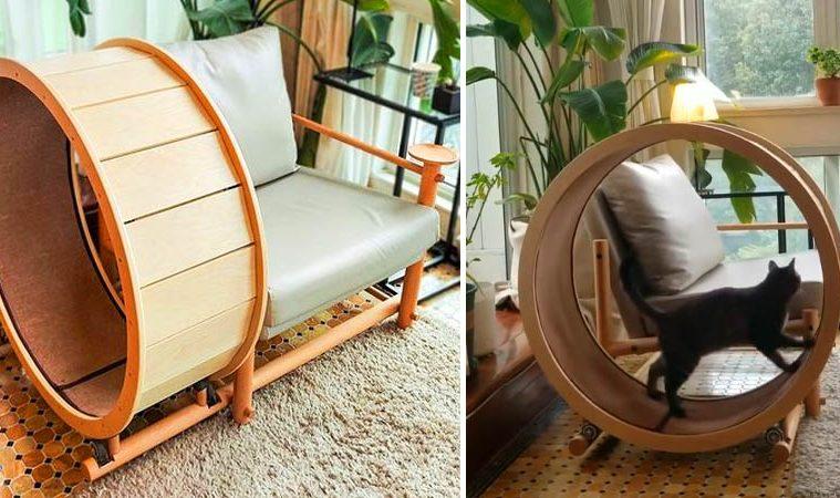 Cat Exercise Wheel Armchair