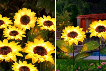 Solar-Powered Sunflower lights