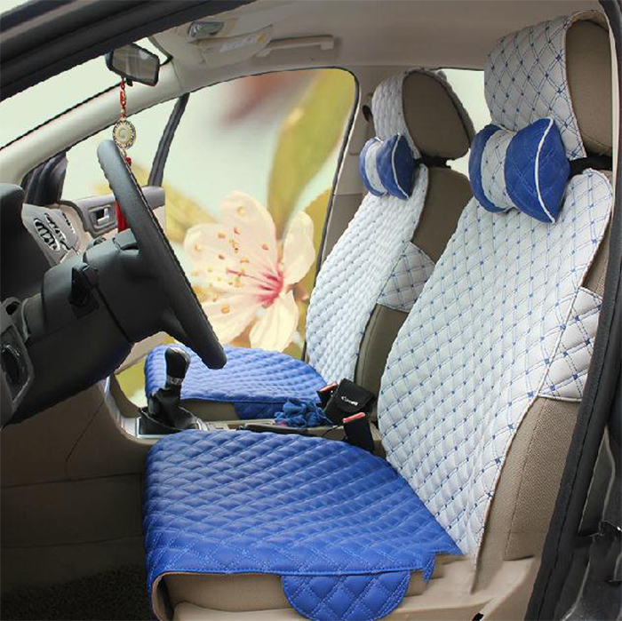 car upholstery cover leather white-blue