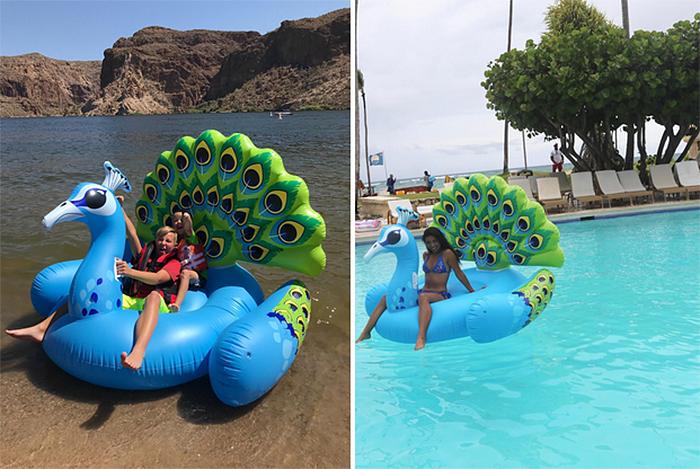 giant peacock pool float
