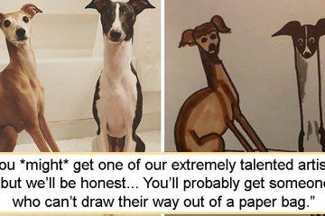 Bad pet drawings