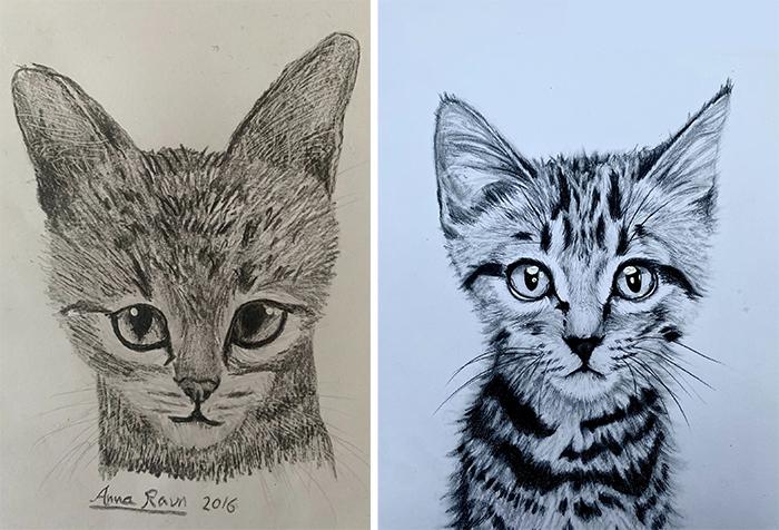 cat drawing progress