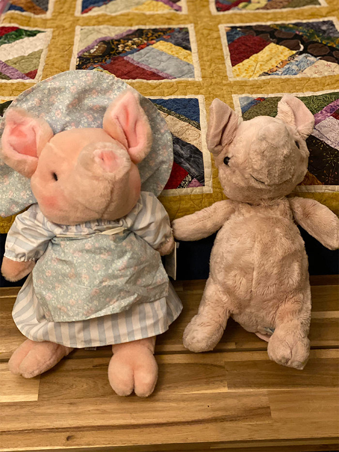 old versus new stuffed toy plush pig