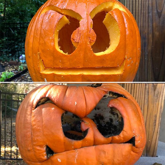 worn down goomba pumpkin