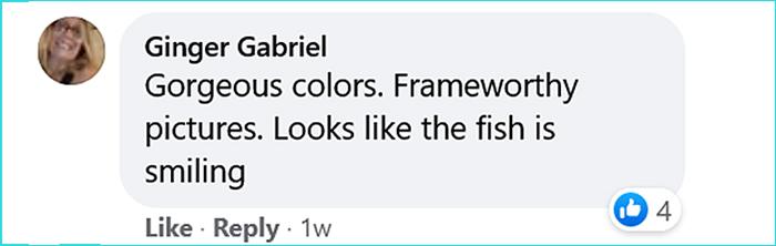 dead opah moonfish oregon comment ginger gabriel