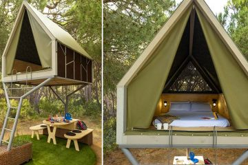 glamping pinea suite