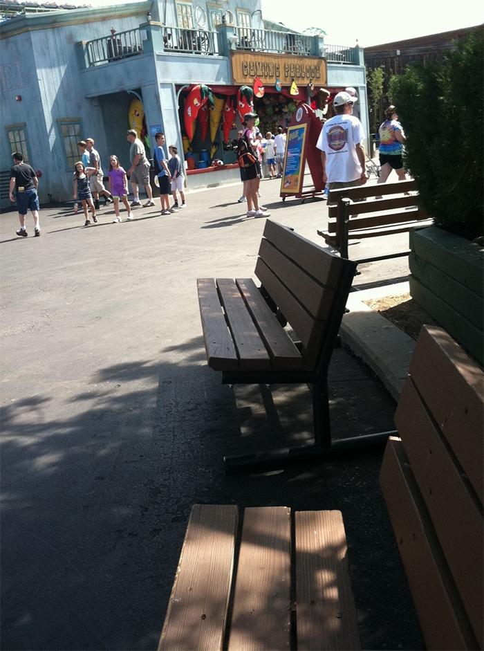 pregnancy problems amusement park ride