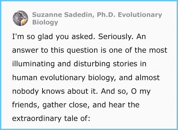 suzanne sadedin how women got their periods