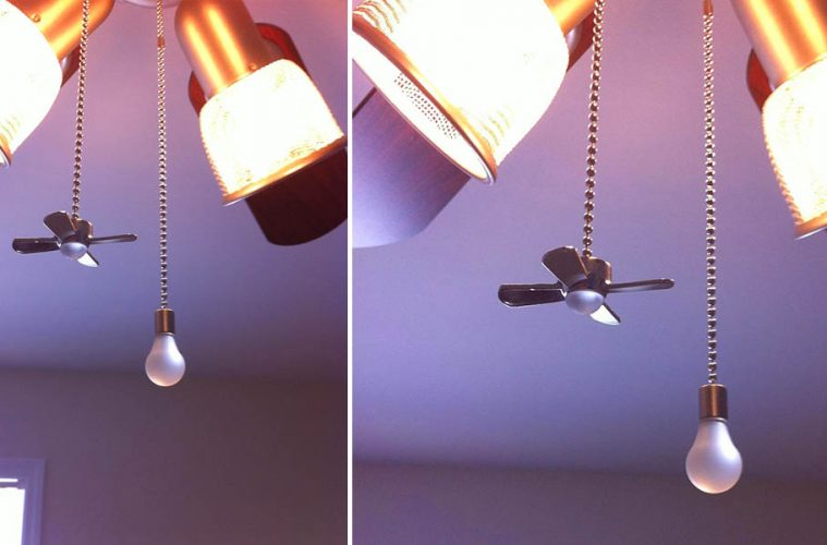 Fan and Light Bulb Shaped Pull Chains