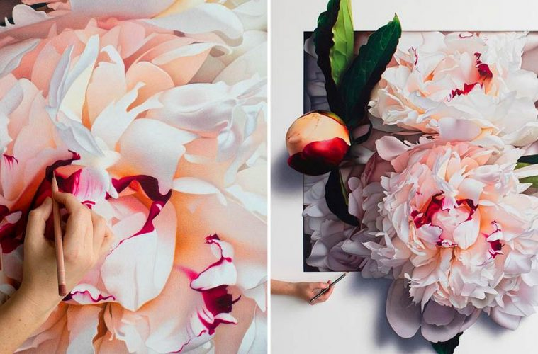 Flower Drawings With Colored Pencils