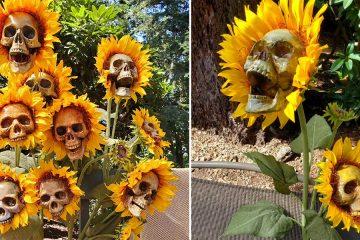 Skull sunflowers