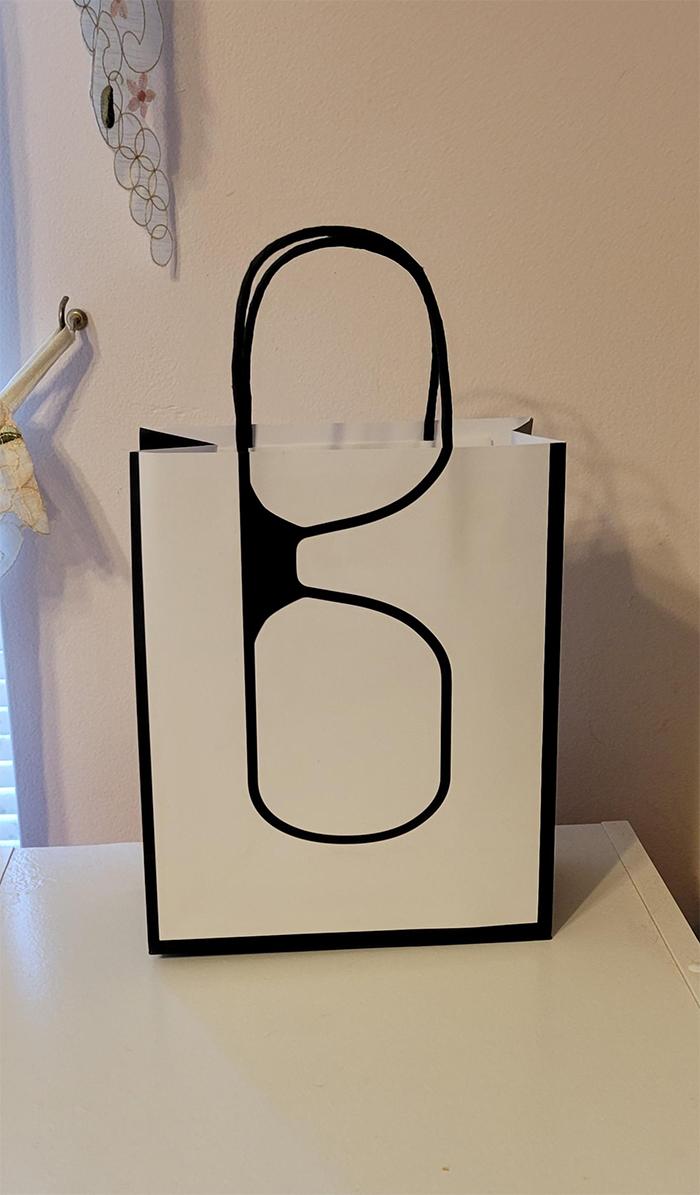 brilliant design ideas glasses bag
