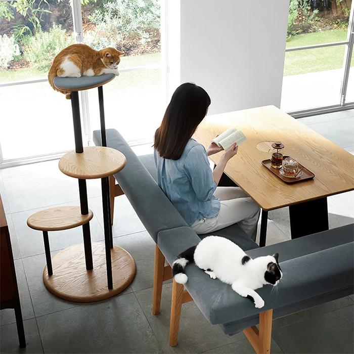 feline friendly furniture line dinos