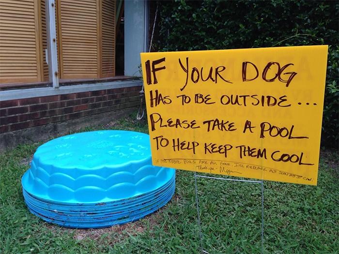 free dog pool to keep them cool