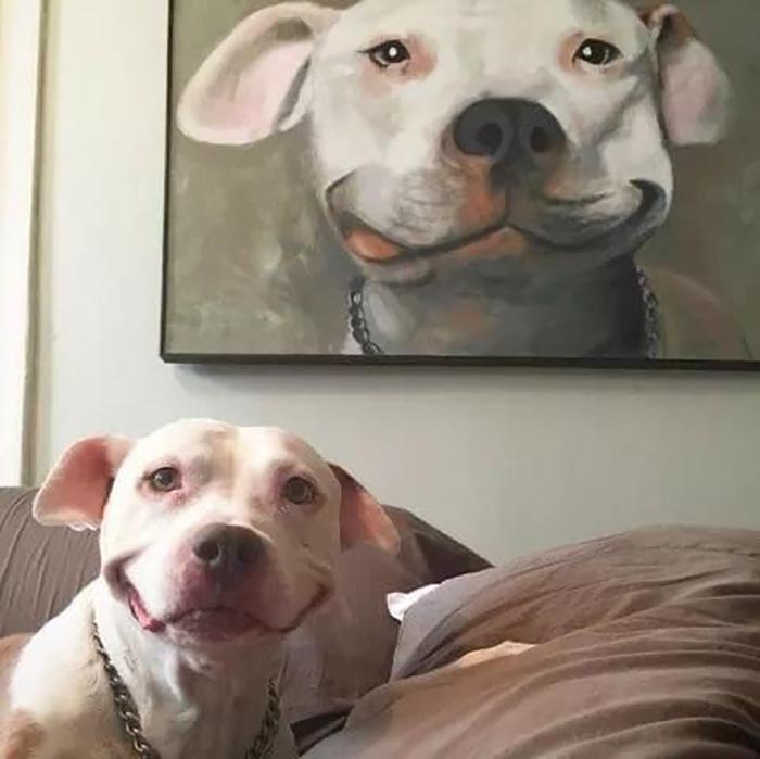 funny dog imitating painting