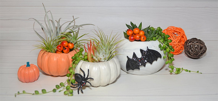 halloween themed concrete pots