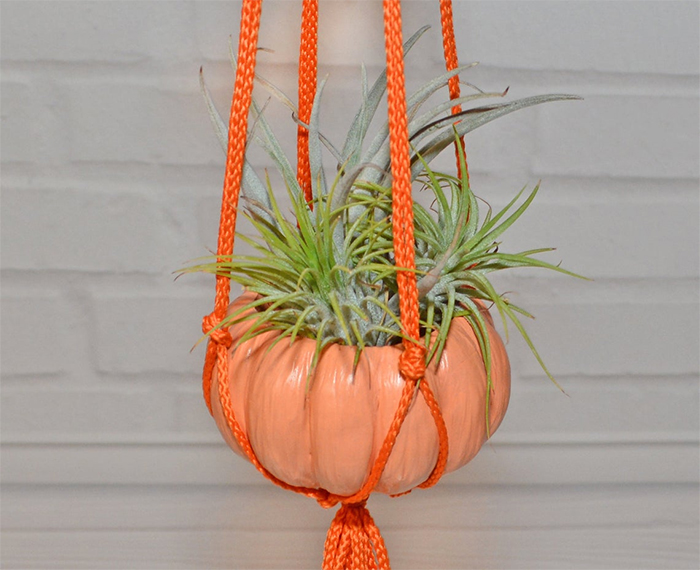 hanging pumpkin planters with macrame