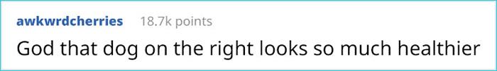hawbucks comment awkwrdcherries