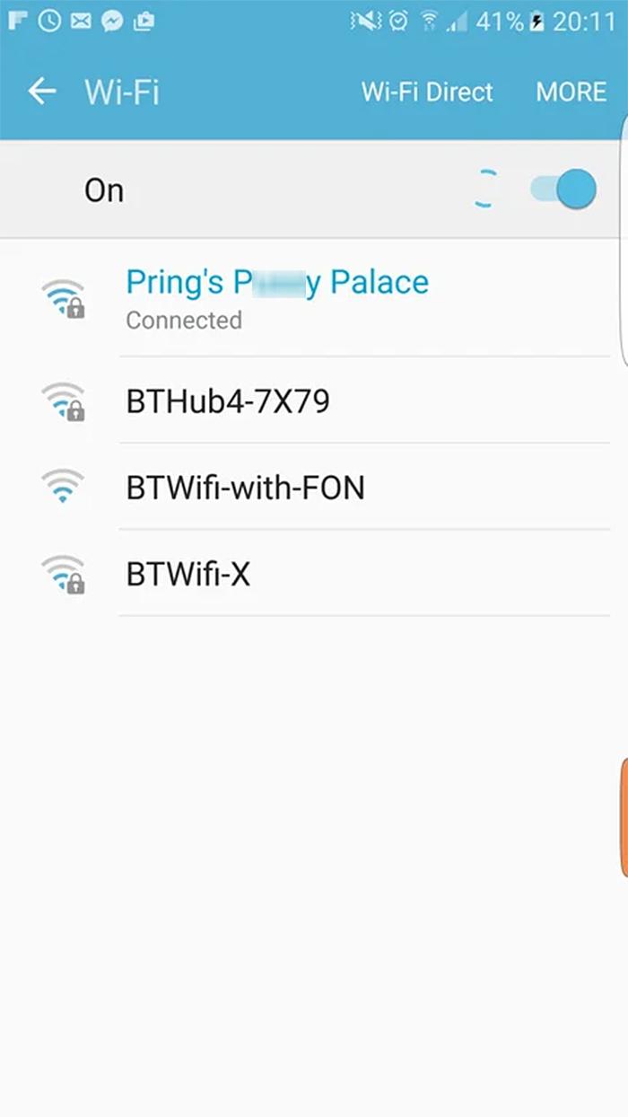 hilarious seniors cat crazy wifi name