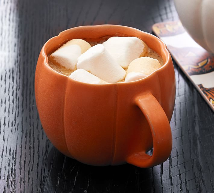 pumpkin shaped dinnerware mug