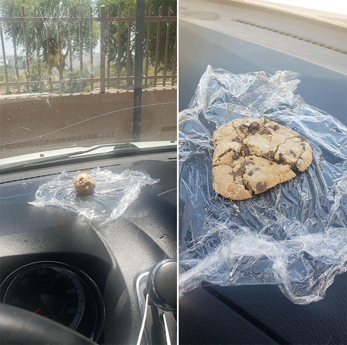 summer heatwaves baking cookies on car dashboard