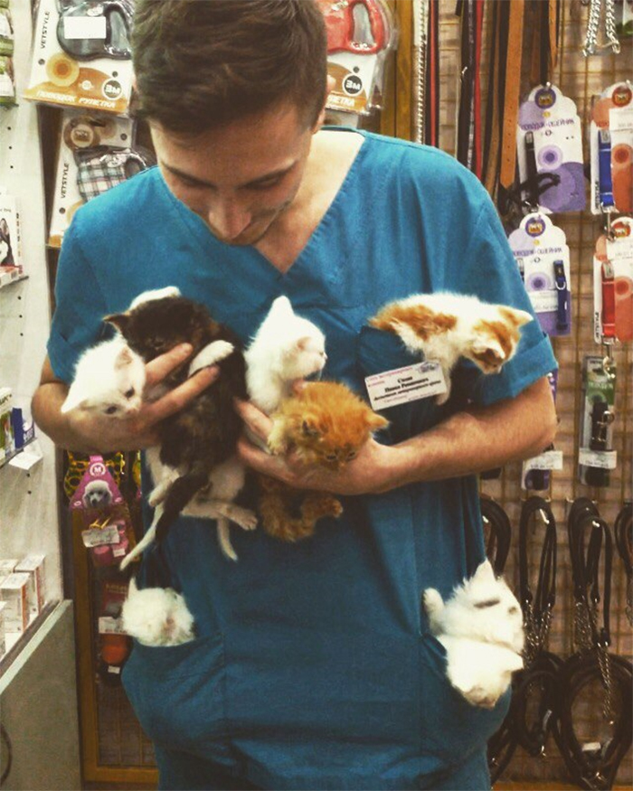 vet carrying kittens