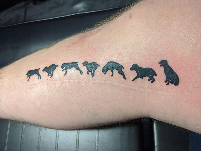 clever tattooing over scar dogs running