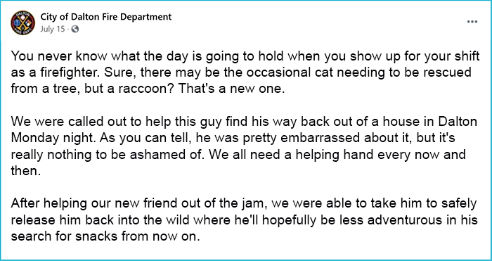 firefighters save raccoon story
