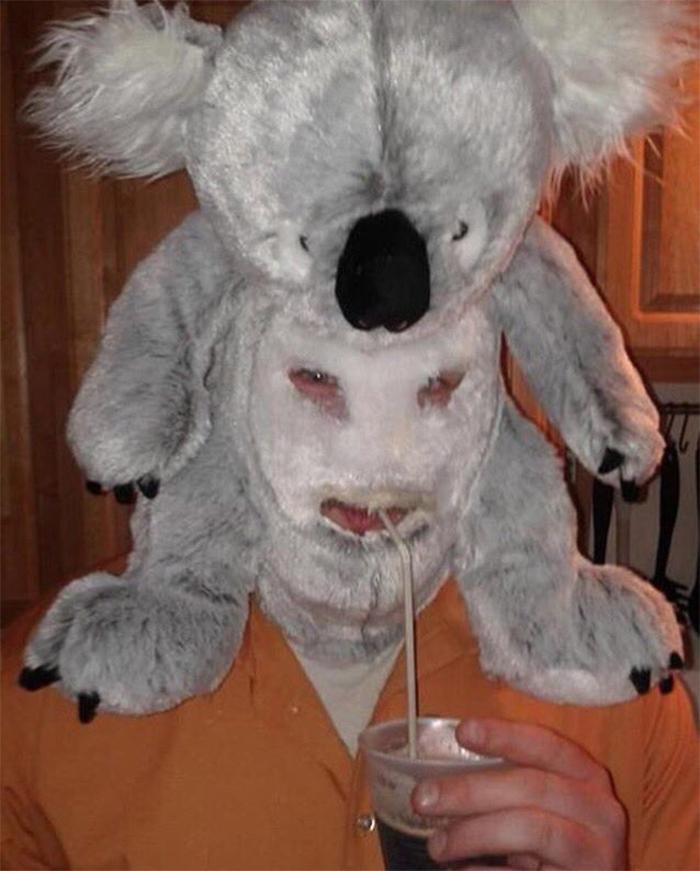 plush koala head cover